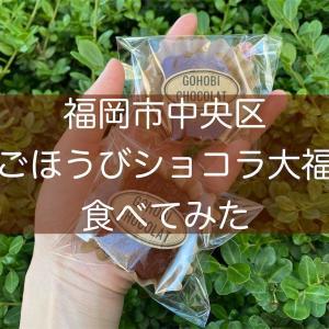 【口コミ】福岡市ごほうびショコラ大福食べてみた!通販は?原材料は?