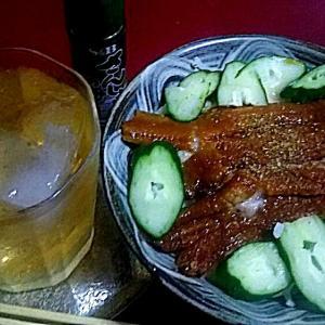 煮アナゴとマグロと長芋のバリエーション料理各種