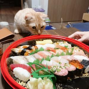 寿司ざんまい*