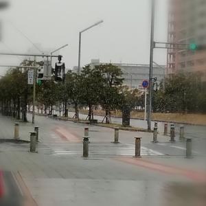 関東南部は雪模様。でジムへ(術後10ヶ月ちょうど)
