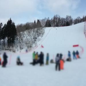 今度こそ!競技スキー公式戦  デビュー戦(滑走日数 R:4 坊主:6 )