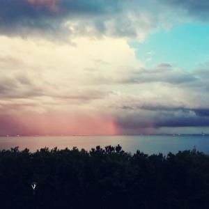 雨上がりの虹(術後1年+31日)