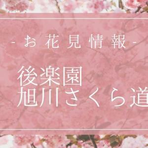 岡山の桜情報!「後楽園・旭川さくら道」の見頃は3月下旬♪桜カーニバル詳細も