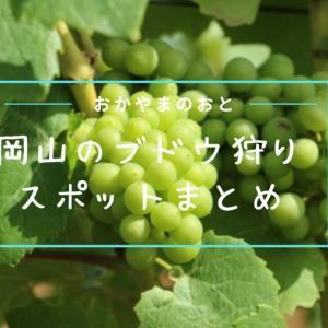岡山県でぶどう狩り(食べ放題)できる農園やスポット※まとめ