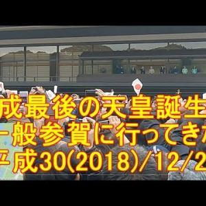 平成最後の天皇誕生日・一般参賀に行ってきた。