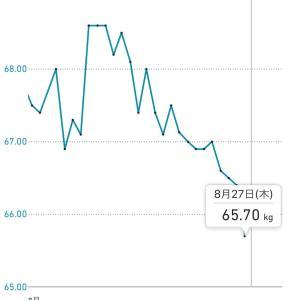 【リングフィットアドベンチャー】3週間続けて、効果を実感!体重が3キロ痩せたぞ!
