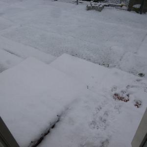 とうとう冬に!!