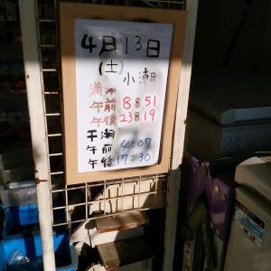 SEASON4 第7・8戦 豊洲ぐるり公園・D突堤(前編) 0413・27
