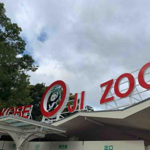 【神戸王子動物園】の割引・駐車場などまとめ