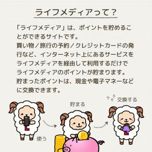 ポイントサイト紹介♡ライフメディア編
