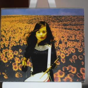 Mr.Children「BOLERO」全曲紹介 ~シングル5曲を喰らうほどのアルバム曲達~