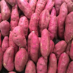 【秋の味覚特集】サツマイモの栄養は?なんでオナラが出るの?