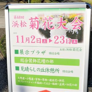 浜松フラワーパーク菊花展