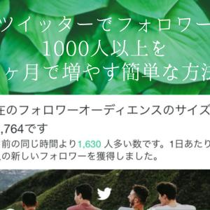 ツイッターでフォロワー1000人以上を1ヶ月で増やす簡単な方法