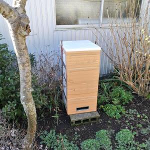 ミツバチの巣箱(冬仕様)