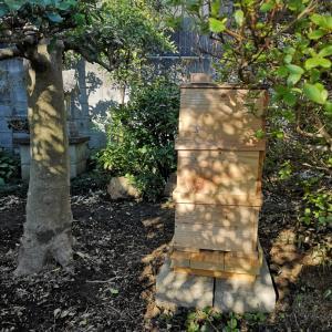 ミツバチの巣箱増設