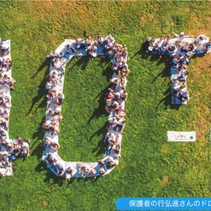 ABCプリスクール&パイン日本語アフタースクール 新入生歓迎の合同ピクニックレポート