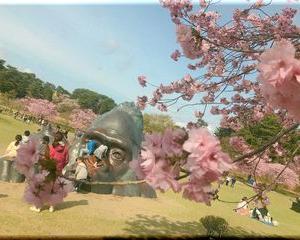 4月 ゴリラ公園