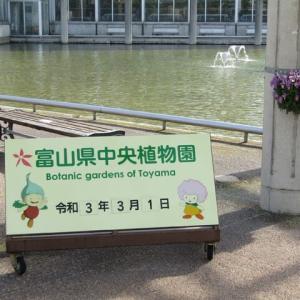 富山中央植物園
