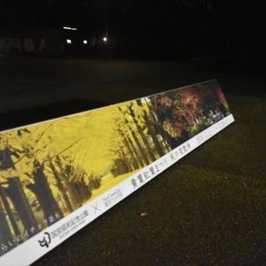 11/23 撮影日記 昭和記念公園 黄葉・紅葉まつり「秋の夜散歩」