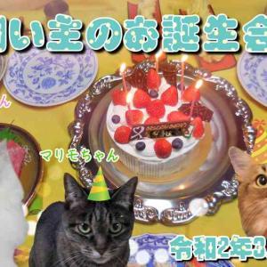 #ブログ更新「令和2年3月30日-飼い主のお誕生日会」