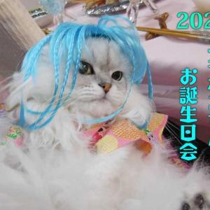 #ブログ更新「2020ユキポンのお誕生日会」