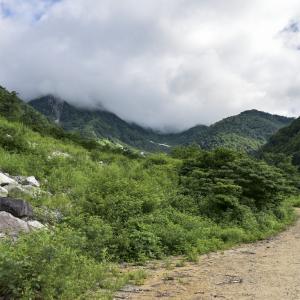 NHK朝ドラ「エール」志村けんさんの登場よりも、物語に引き込まれた再放送