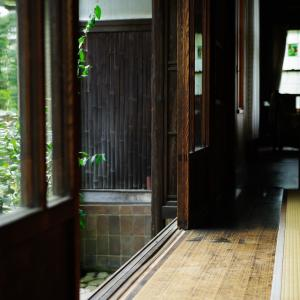 NHK朝ドラ「エール」総集編で見ても梅は可愛い!音とヒロイン交代してもらってもいいレベル!