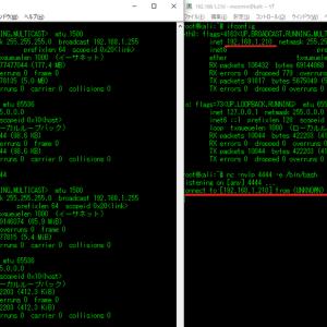 HTTPのメソッドをnetcatで実行する