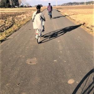ロング散歩とサイクリング