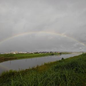 虹 × 犀川