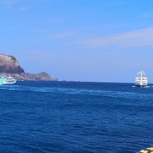 神津島② 初夏の陣 ハマフエフキ(タマン)フエダイと珍魚