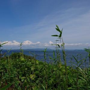 三浦半島から観音崎へ🚙