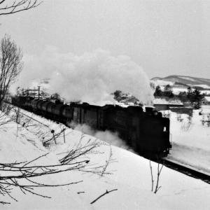 昭和48年蒸気機関車D51 宗谷本線和寒駅付近を通過中