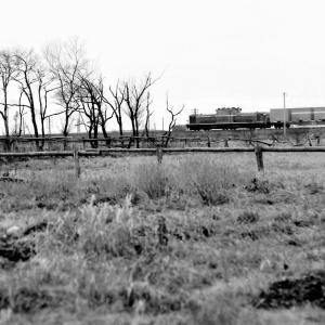 昭和50年に撮影したDD牽引コンテナ車