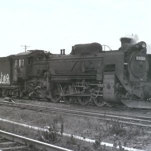 昭和50年蒸気機関車D51320 追分機関区構内休息中を撮影