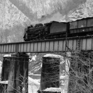 石炭満載で夕張線紅葉山鉄橋を行くD51