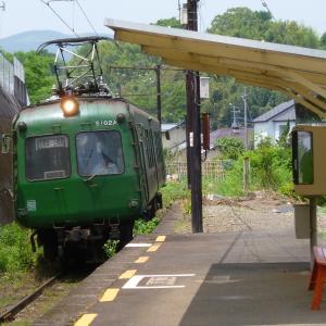 私のお気に入り写真 アオガエル(熊本電気鉄道)