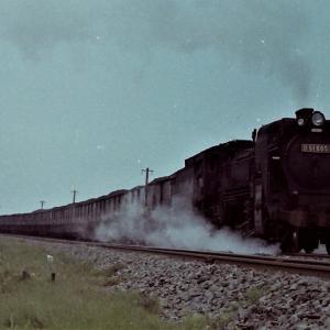昭和47年蒸気機関車D51605 遠浅~沼ノ端間でカラー撮影