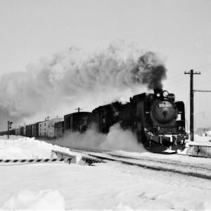 昭和49年蒸気機関車D51483 室蘭本線古山駅近くで貨物列車を