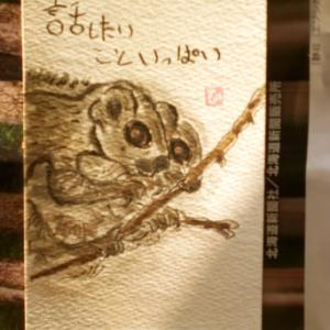 エゾモモンガ(模写)
