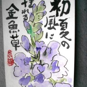 金魚草・菖蒲