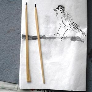 わりばしペンで。