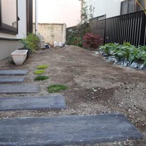 最近の我が家の庭の様子