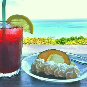 真夏の沖縄滞在記その2ーフルーツとスイーツー