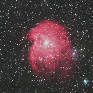 オリオン座のモンキーフェイス星雲(NGC2174)