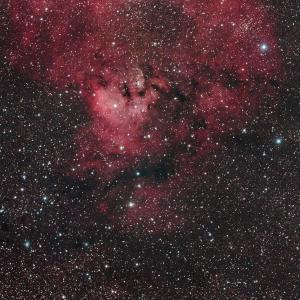 ケフェウス座のクエスチョンマーク星雲(NGC7822)