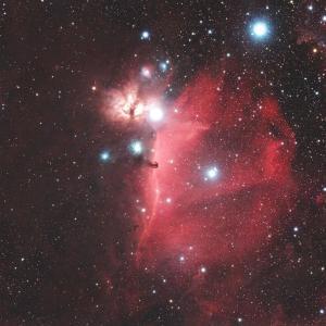 オリオン座の馬頭星雲(IC434)付近の散光星雲