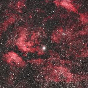 はくちょう座のγ星サドル付近の散光星雲