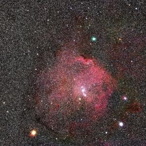 シグマ105mmF1.4DG Artによるエンゼルフィッシュにアトラス彗星を添えて!